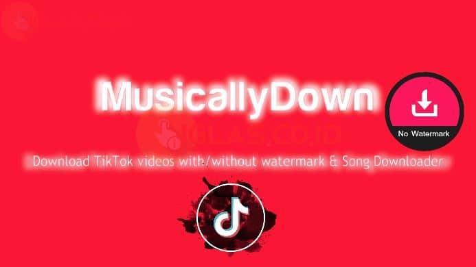 Musicallydown com Tiktok Video Downloader Tanpa Watermark Asli Work